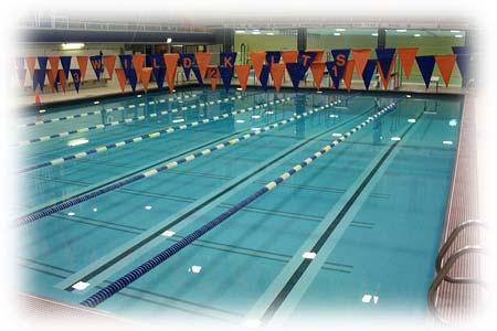 Considerazioni generali sul tapering 19 nuoto on line - Piscina trezzano sul naviglio nuoto libero ...